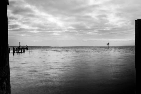 Chesapeaks-Bay__05