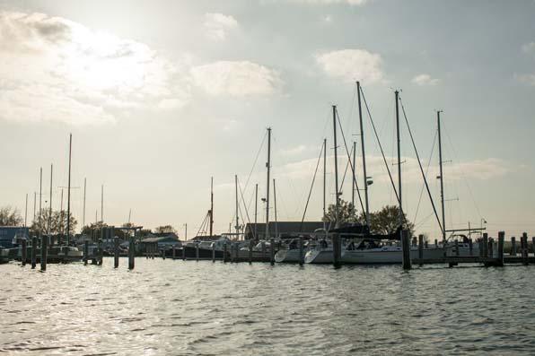 Chesapeaks-Bay__08