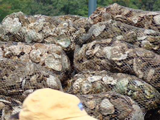 2013-Oyster-Deliveries_ABH