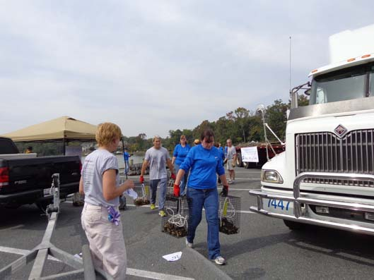 2013-Oyster-Deliveries_ACH