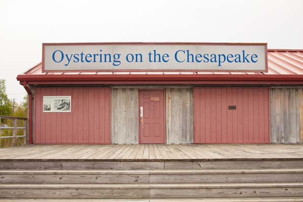 Chesapeaks-Bay__26